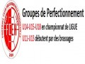 Groupes Perfectionnement FCEH